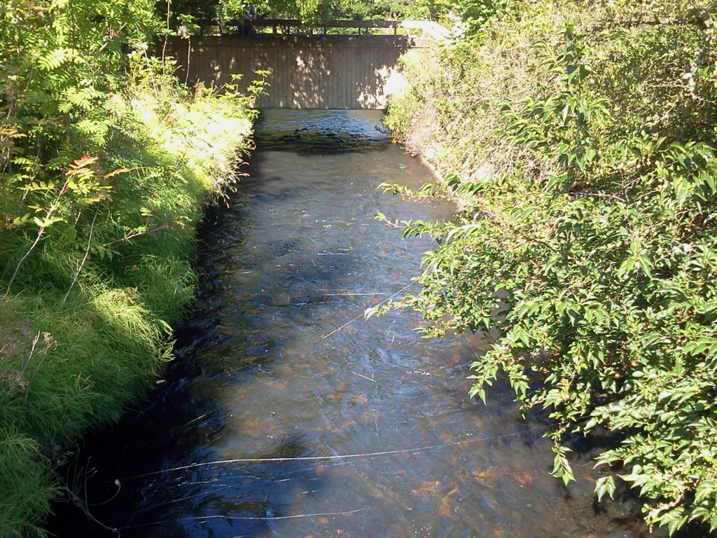 Mill Stream flows through the campus
